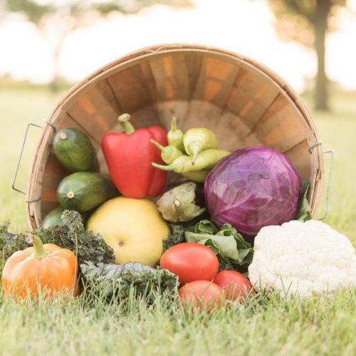 Family Farm Basket