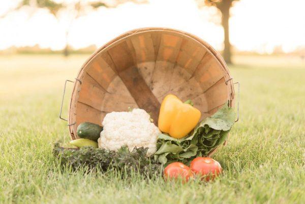 Taste of Summer Basket (small)