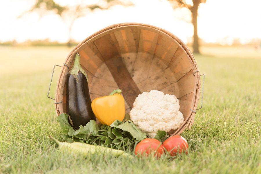 Garden Bundle Basket
